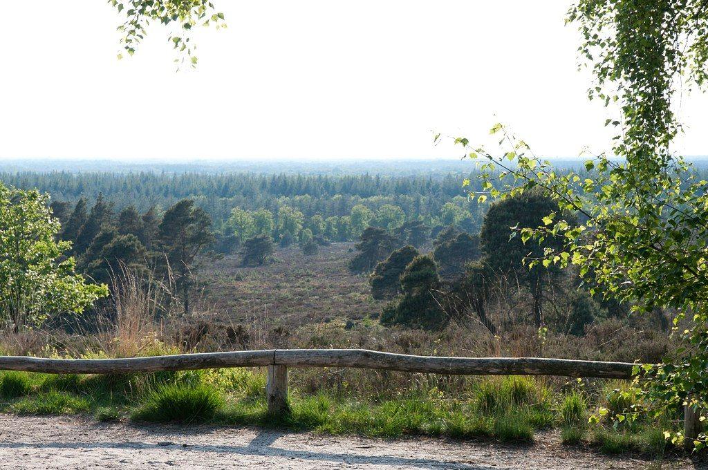 Picture: Holterberg-uitzicht-2